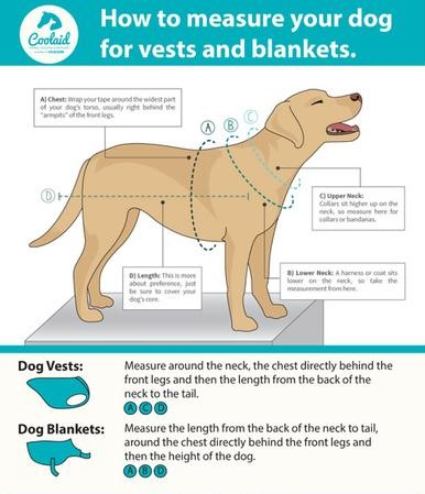 canine-cooling-coolaid-dog-chart-480x480.jpg